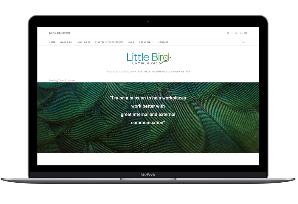 Littlebird communications